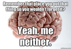Damn you, Scumbag Brain!