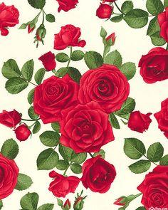 Glamour - Rosebuds & Romantic Blooms - Eggshell