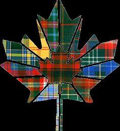 Clan Munro Association of Canada Tartans! by queen Scottish Clans, Scottish Tartans, Tartan Decor, I Am Canadian, Tartan Kilt, Men In Kilts, Canada Day, Nova Scotia, Coat Of Arms