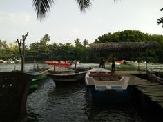 Madu river boat safari and fish massage therapy