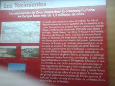 """Tras unos 25 años de excavaciones y estudios sobre la zona se han encontrado un gran numero de yacimientos que datan de entre 3 millones y 800.000 años. Los yacimientos más importantes son los de Venta Micena, Barranco León y Fuente Nueva, en los cuales se ha encontrado un resto óseo de uno de los primeros """"Homos"""" que habitaron Europa, así como gran número de fósiles de mas de 28 especies distintas."""