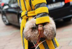 Muito Frio Em Paris ? Agarre sua bolsa !