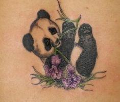 Panda tattoos on pinterest panda tattoos panda bear for Baby panda tattoo