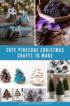 'Tis the season for pinecones to be falling from the trees. If your kiddos love to collect them as much as mine do you need these easy pinecone crafts for Christmas!
