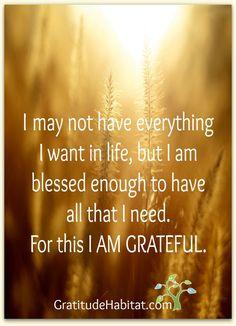 I am blessed and grateful.  Visit us at: www.GratitudeHabitat.com