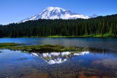 Mt. Rainier Photo Gallery - RainierVisitorGuide.com