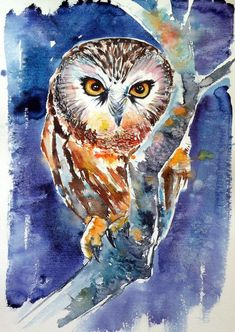 Buy Owl at night 50 x 35 cm/, Watercolor by Kovács Anna Brigitta on Artfinder. Discover thousands of other original paintings, prints, sculptures and photography from independent artists. Watercolor Sketchbook, Watercolor Projects, Watercolor Paintings, Fox Painting, Watercolor Ideas, Watercolors, Buy Paintings, Original Paintings, Original Art
