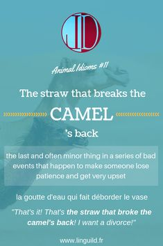 """Animal idiom of the day: """"The straw that breaks the camel's back"""" 🐫 LinguiLD /Idioms/ (Design by LinguiLD)"""