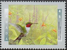 Ruby-throated Hummingbird stamps - mainly images - gallery format