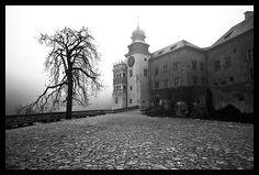 Pieskowa Skała - Ostatnio dodane - Galeria zdjęć DigitalCamera Polska - fotografie, zdjęcia