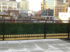 No more unsightly bars and fencing. Get more green with our artificial boxwood hedges. Artificial Hedges, Artificial Boxwood, Artificial Plants, Privacy Hedge, Boxwood Hedge, Fence, Beach House, Planters, Sidewalk