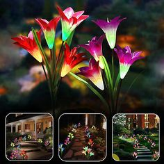 Connect the stake, solar panel and the led light head. - x LED Solar Lily Flower Light. Enjoy the landscape of lily flowers at night. Turn the switch under the solar panel to auto mode.
