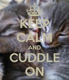 KEEP CALM AND CUDDLE ON