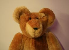 Uncle Grizz  http://www.stearnsybears.com/new-products/uncle-grizz