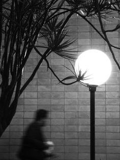 David Richard FOTOGRAFIA - Portfolio - Detalhes no Olhar