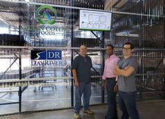 Vertical farming sprouts in Detroit - Capital Press
