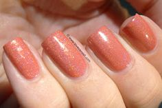 Too Fancy Lacquer The Dawn To Dusk collection - Nemo's Pad