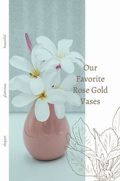 Take a look at our favorite rose gold vases. Rose Gold Vase, Rose Gold Decor, Gold Vases, Gold Planter, Glass Planter, Flower Planters, Flower Vases, Rose Gold Bedroom Accessories, Succulents In Containers