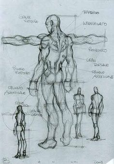 Character Design Collection: Male Anatomy - Daily Art