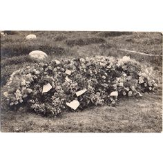 Black & White Postcard Flower Covered Grave Listing in the Social History,Postcards,Collectables Category on eBid United Kingdom | 167546743