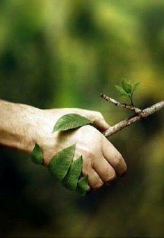Una  mano amiga, te brinda toda la sabiduría que existe en su vida. Saber elegir es clave