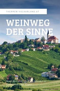 Homeland, Vienna, Austria, The Good Place, City Photo, Vineyard, Places To Go, Wanderlust, Around The Worlds