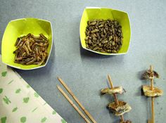 Insects to eat