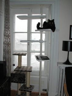 IKEA's STOLMEN line may be intended for closets, but it also makes a pretty great system for putting together kitty gyms, like this one from IKEA Hackers. 7 IKEA Hacks Your Cats Will Love — From the Archives: Greatest Hits Stolmen Ikea, Ikea Stuva, Ikea Hacks For Cats, Cat Hacks, Ikea Cat, Ikea Closet, Entryway Closet, Cat Towers, Cat Playground