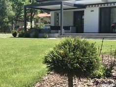 Doskonałe zadaszenie tarasu u naszego Klienta za pomocą pergoli pro oraz markizy - Blog MK Studio Warszawa Pergola, Garden, Plants, House, Patio, Modern Townhouse, Balcony, Garten, Home