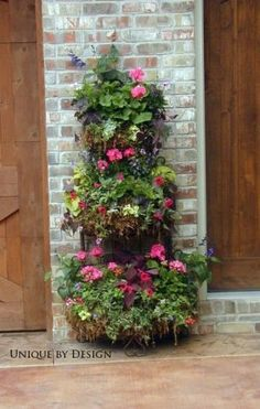 container garden with very vertical shapingw