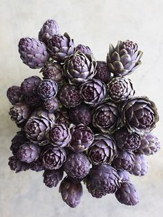 Artichokes, flower or food?