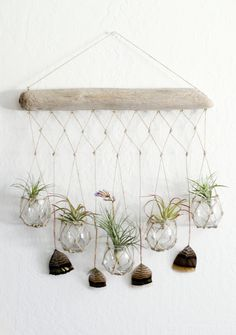Boho Chic Macrame Driftwood Hanger -- perfect for airplants and candles!