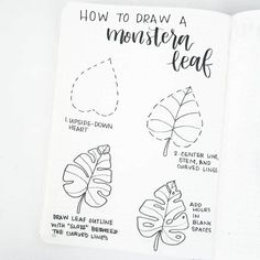 Drawing Doodles Sketches Hi friends, glad to be back posting! Here's a simple tutorial to draw a monstera leaf. Play with the shape and the number of slots and… - Hole Drawing, Leaf Drawing, Drawing Tips, Drawing Ideas, Drawing Art, Sloth Drawing, Panda Drawing, Feather Drawing, Sketch Ideas