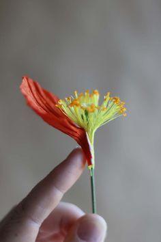 Paper poppy tutorial by Kate Alarcón for Design*Sponge.com