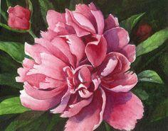 Watercolors for Sale   Chery Johnson Art