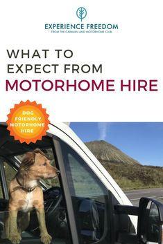 If you're considering switching up the tent or glamping pod for a touring adventure, motorhome hire is a great option. You'll have the freedom to go where you please and take the journey at your leisure. But what should you expect when you pick up your vehicle? Motorhome Organisation, Motorhome Hire, Motorhome Living, Airstream Trailers, Glamping Uk, Glamping Holidays, Motor Home Camping, Dog Friendly Cabins, Oven And Hob