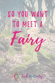 Have you ever wondered how to see a fairy? Here are some top tips on how to meet a fairy so you can manifest easier and faster instead of blocking them. Wiccan Spells, Magick, Pagan, Fairy Dust, Fairy Land, Types Of Fairies, Witchcraft For Beginners, Magical Thinking, Nature Spirits