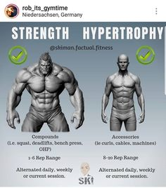 Get huge muscles with the ultimate bulking stack that comes with the power of legal steroids for mass and strength without side effects Muscle Fitness, Fitness Tips, Health Fitness, Mens Fitness, Weight Training Workouts, Gym Workout Tips, Fitness Studio Training, Calisthenics Workout, Sport