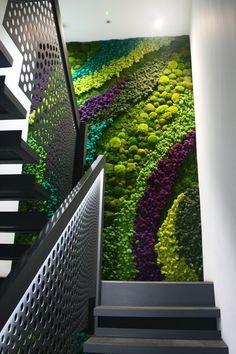 Moss Wall Art, Moss Art, Green Wall Art, Green Walls, Biophilic Architecture, Terraced Backyard, Artificial Plant Wall, Vertical Garden Wall, Small Space Gardening
