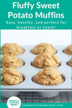 Healthy Toddler Sweet Potato Muffins Recipe! With a fluffy texture, a naturally sweet flavor, and a hint of cozy spices, these Easy Sweet Potato Muffins will be a new favorite veggie muffin for kids! Perfect for breakfast, snacks or served on the side of soups and stews. #MuffinRecipe #VeggieMuffins #HealthyMuffins #HealthyKids #ToddlerFood #ToddlerSnack