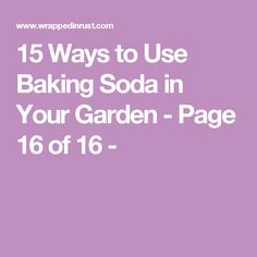15 Ways to Use Baking Soda in Your Garden - Page 16 of 16 -