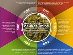 Fumar free by Vaporite: Marihuana con THC o CBD, cada una tiene su ocasión...