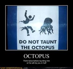 funniest photos ever | Funniest Shit Ever: Do Not Taunt The Octopus. | Youdopia