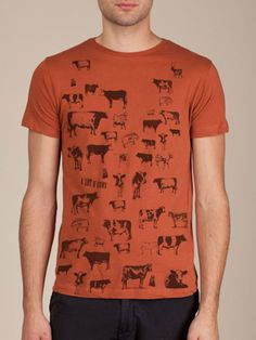 A lot o'  Cows Printed on an Amber Short Sleeve Tee Shirt by Civilian Art, Great Shirt with Great Graphics. $25.00, via Etsy.
