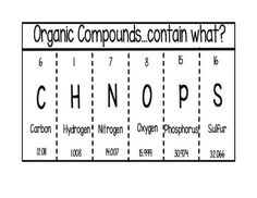 This graphic organizer is also a mnemonic that will help students remember the elements contained in organic compounds.