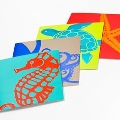 Graphic Sea Life Assorted Note Cards