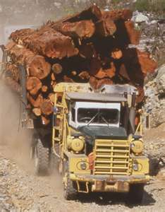 "Log Truck. "" look at that load"" this hsppens quite often while riding down the road with the love of my lifr"