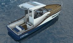 Coral 23. Here she has the fishing configuration.