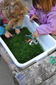 Let your child help you cut grass! This activity allows your child to practice using scissors and build fine motor skills. If you're searching for a pediatric occupational therapy provider, contact LA Speech. Nature Activities, Spring Activities, Sensory Activities, Preschool Activities, Motor Activities, Outdoor Activities, Scissor Practice, Scissor Skills, Toddler Play