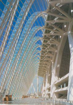 City of sciences by Santiago Calatrava                              …